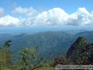 Hike the El Yunque Trail to the Top of the Rain Forest